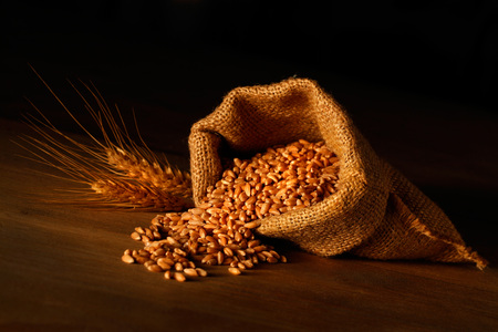 Jute sack with wheat grains and ears