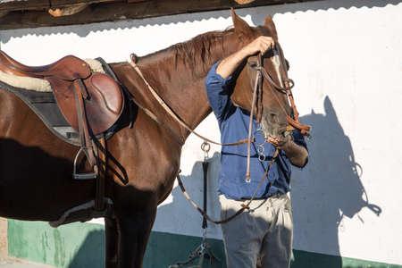 uomo a cavallo: horseman