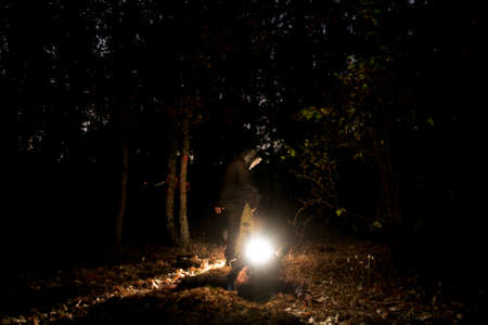 mistery: mistery light in the forest