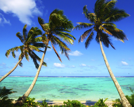 Beach with palm trees over tropical water at Muri lagoon, Rarotonga, Cook Islands.