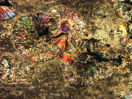 fibrous: Micro-photo of geological thin section under cross-polarized light. (Anhydrite Fibrous)