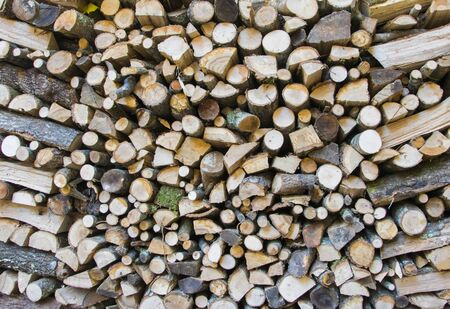 firewood background: Wall firewood, background of dry chopped firewood logs in a pile.