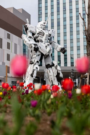 Tokyo, Japan - 17 march 2020 / Unique view of the 59-foot tall life-size replica Unicorn Gundam (RX-0) statue in front of Diver City Plaza Tokyo, Odaiba. - Tulips flowers in the