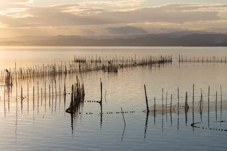 Sunset in the calm waters in the natural park of Albufera, Valencia, Spain. Magical colors in natural background