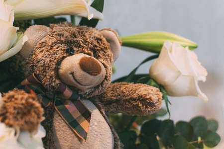 white roses and a teddy bear on white background. Close up.