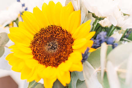 Bouquet with sunflower. Colorful bouquet with sunflowers, lavander and lilies. Close up