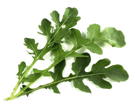 fresh arugula leaves on white background Stock Photo