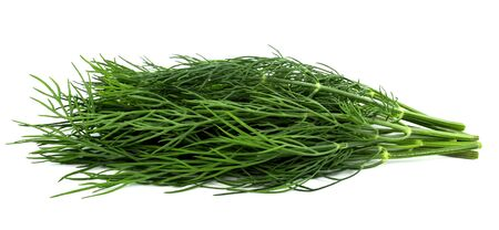 bunch fresh, green dill on a white background Stock Photo