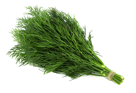 bunch fresh, green dill on a white background Imagens