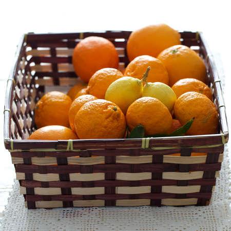 bisected: oranges