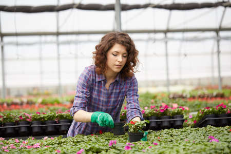 young lady working in a plant nursery