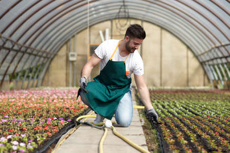 grower: Portrait of a smiling greenhouse worker