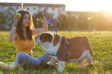 young woman Playing with  english bulldog on sunset Stock Photo