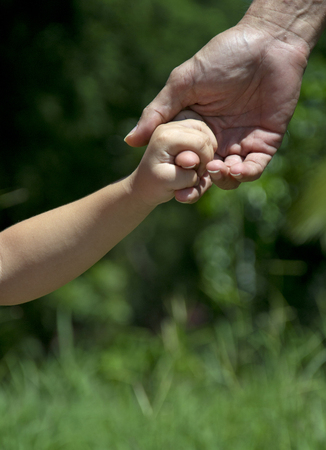 A Father who holds his child hand in the forest. photo