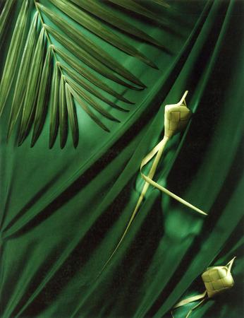 Ketupat on green background for eid mubarak greeting