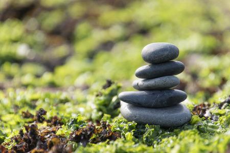 balanza: El equilibrio y la armon�a en la naturaleza Foto de archivo