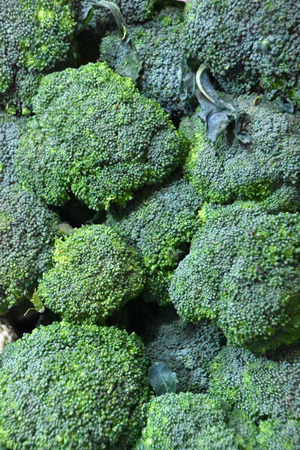 whose: Broccoli is an edible green plant in the cabbage family whose large, flowering head is eaten as a vegetable.