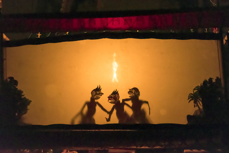 shadow show: Balinese  shadow puppet show