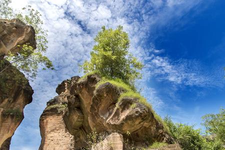 Petit arbre sur une calcaire au sommet d'une colline, Arosbaya, Madura Banque d'images