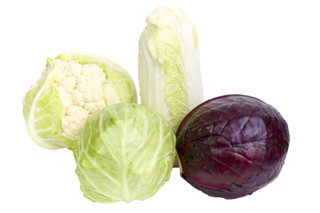 Four kinds of cabbage isolated on white background