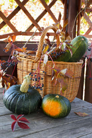 Two pumpkins on a wooden table on a background of a wicker basket Stock Photo