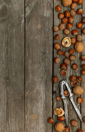 Hazelnuts, walnuts and nutcracker on gray wooden background. Space for text Stock Photo