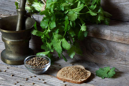 Coriander - ground, grains and green leaves