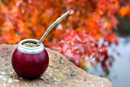 Mate tea in a calabash on a stone table in the garden, against a background of autumn foliage