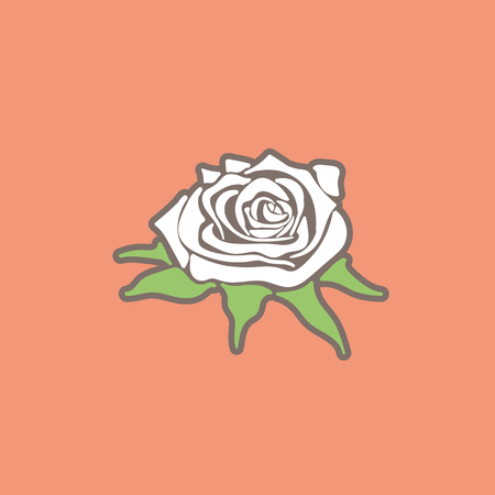 simple stylized illustration of white rose in vector