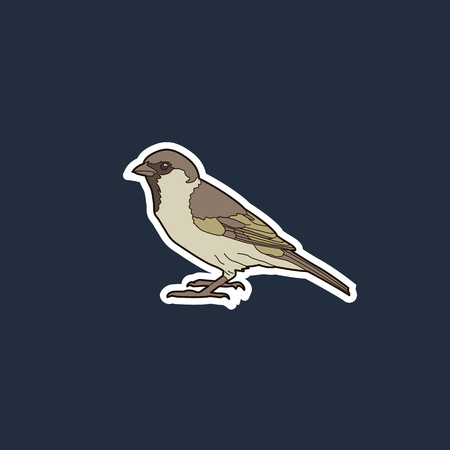 simple isolated color vector illustration of a sparrow on a dark background with edging