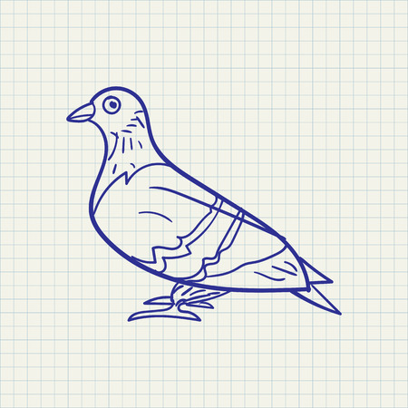 simple hand drawn illustration of a pigeon on a checkered background
