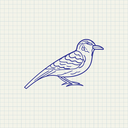 simple hand drawn illustration of a sparrow on checkered background