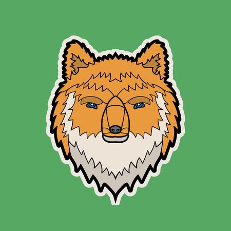 vector color cartoon isolated illustration of a fox head