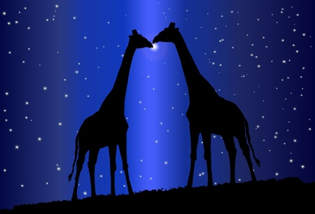 exotica: Silhouette of giraffe  Illustration