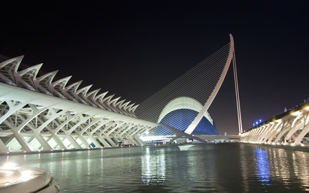 hemispheric: VALENCIA - SEPTEMBER 9: night view of the City of Arts and Sciences designed by Santiago Calatrava on September 9, 2011 in Valencia, Spain