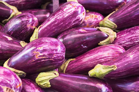 ingedient: Eggplant Stock Photo