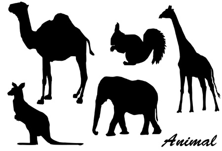siluetas de elefantes: Silueta de los animales