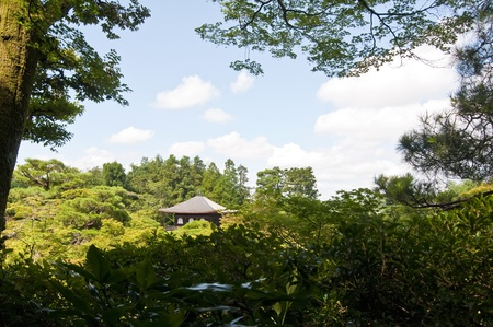 midst: Japanese Temple in the midst of nature and a lake