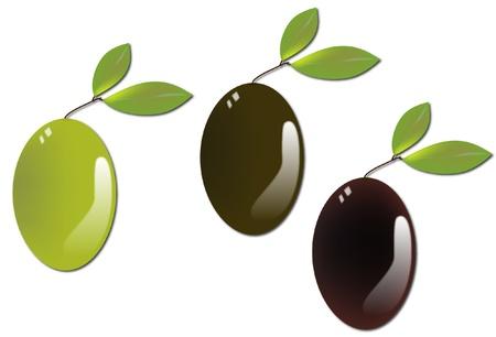 Three olives on white background