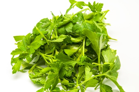 Fresh parsley green on white background photo