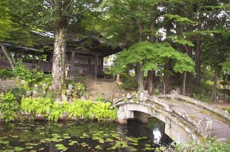 Japanese shrine surrounded by vegetation photo