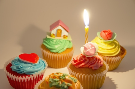 Several colorful cupcakes with a candle photo