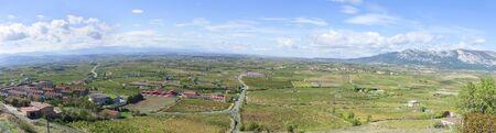 Panoramic view of vineyards in La Rioja photo