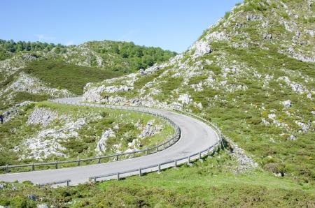 National Park Picos de Europa in Asturias  photo