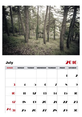event planning: Calendar july 2016 Illustration