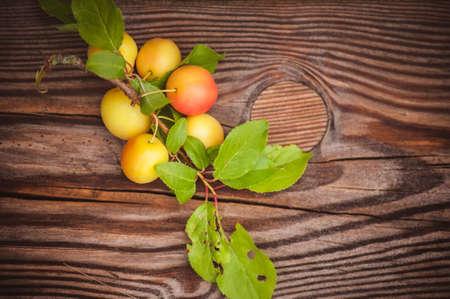 myrobalan: wild yellow plum with leafs  on wooden background Stock Photo