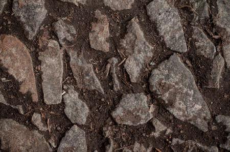 stone path: stone path track on ground texture background