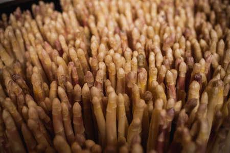 diuretic: bunch of white asparagus sold on vegetable market fullframe Stock Photo