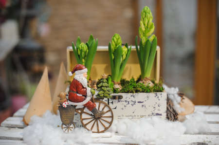 humorously: santa claus on bicycle toy composition with hyacinth flower Stock Photo