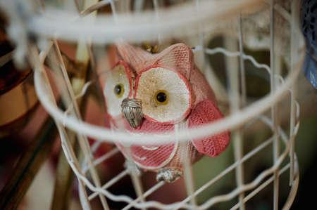 Bird an eagle owl on a cage